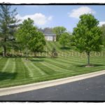 Lawn Care and Maintenance Gallery